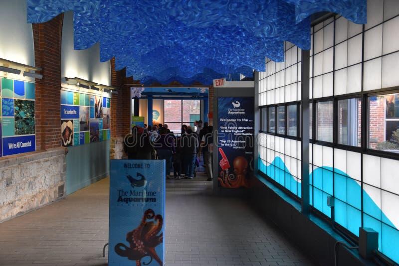 Morski akwarium w Norwalk, Connecticut obrazy royalty free