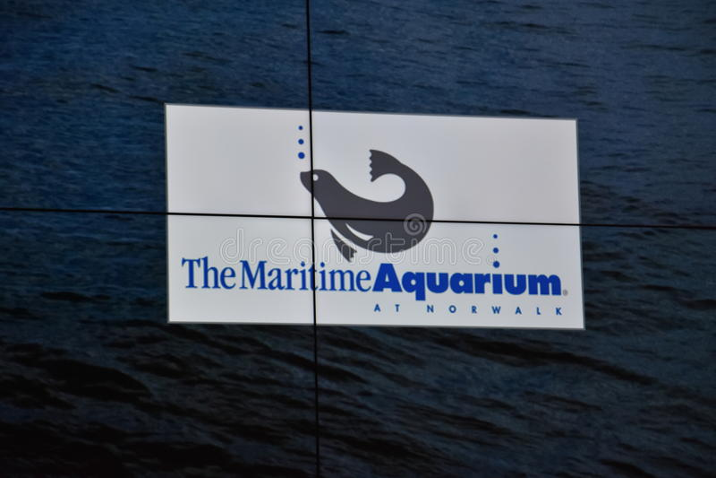 Morski akwarium w Norwalk, Connecticut fotografia stock