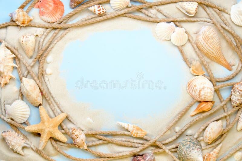 Morski Linowy oceanu Shell kamienia piaska wierzchołka puszka widok zdjęcie stock