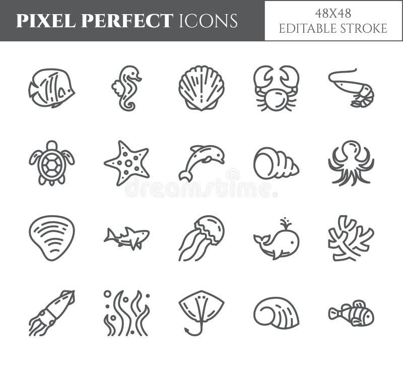 Morski tematu piksel perfect cienieje kreskowe ikony Set elementy ryba, skorupa, krab, rekin, delfin, żółw i inne denne istoty r, ilustracja wektor