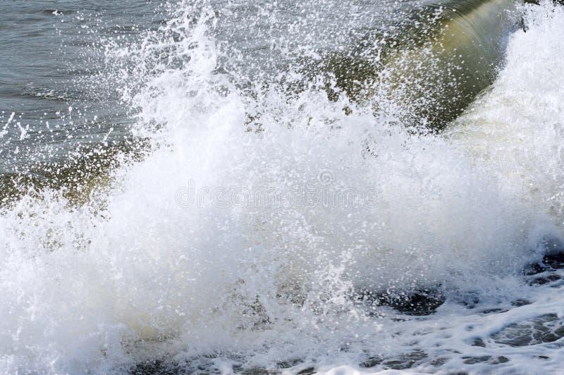 morskie fale surfowania obrazy royalty free