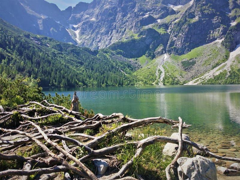 Morskie Oko, montañas de Tatra, lago foto de archivo