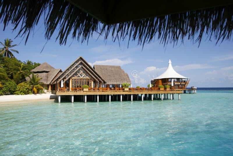 morskie platformy tropikalnym w domu obraz stock