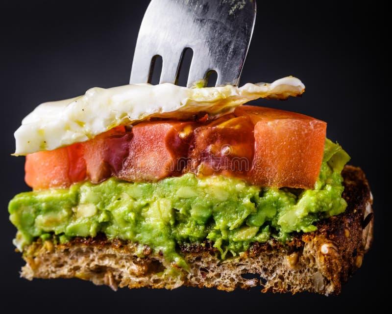 Morsure de pain grillé d'avocat photos libres de droits