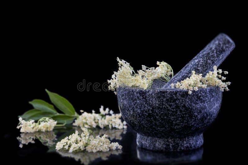 Mortaio e pestello Cosmetico naturale Medicina alternativa, bacca di sambuco di lfowers dell'anziano del frezh della medicina tra immagine stock