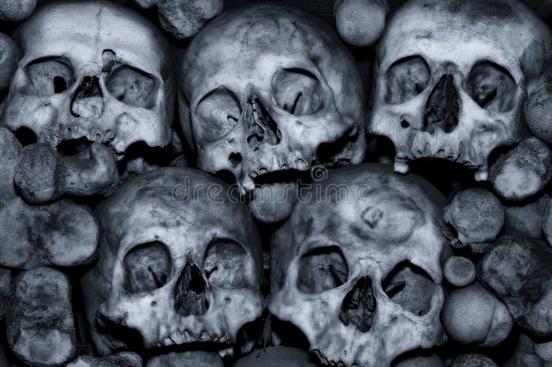 Download Mortaliteit stock foto. Afbeelding bestaande uit dood - 10778952