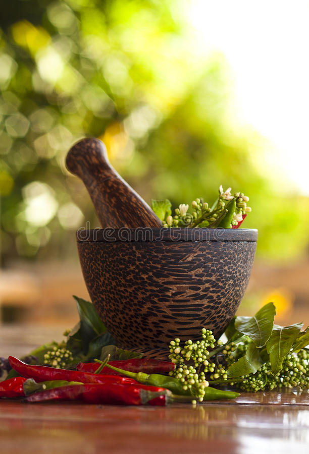 Free Mortar And Pestle Stock Image - 23943101