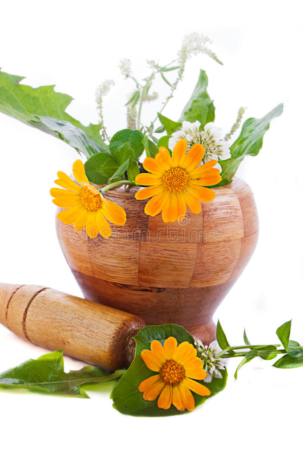 Mortar With Herbs And Marigolds Royalty Free Stock Image