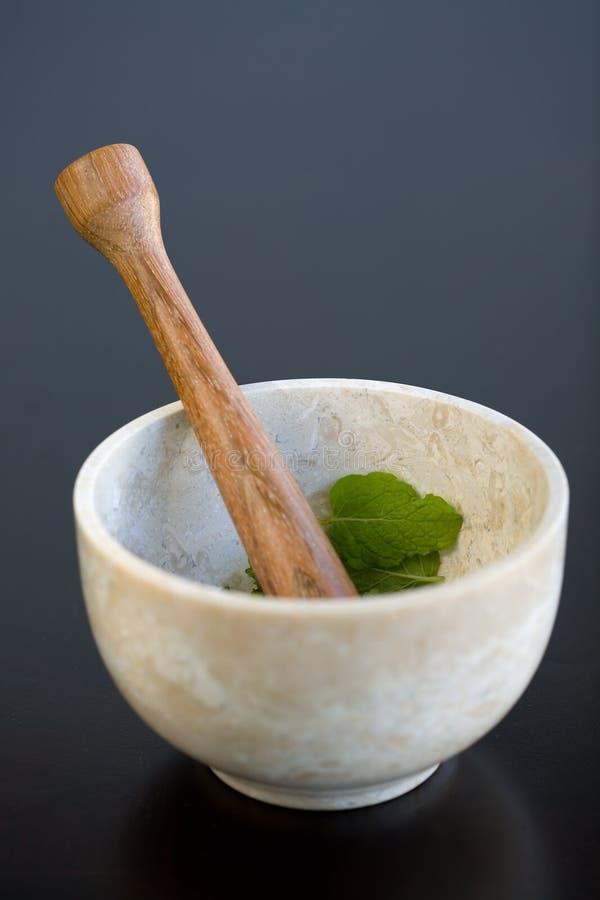 Mortar and Pestal Mint stock photos