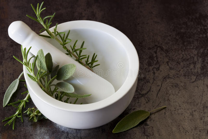 Download Mortar and Pestle stock photo. Image of food, rosemary - 14857122