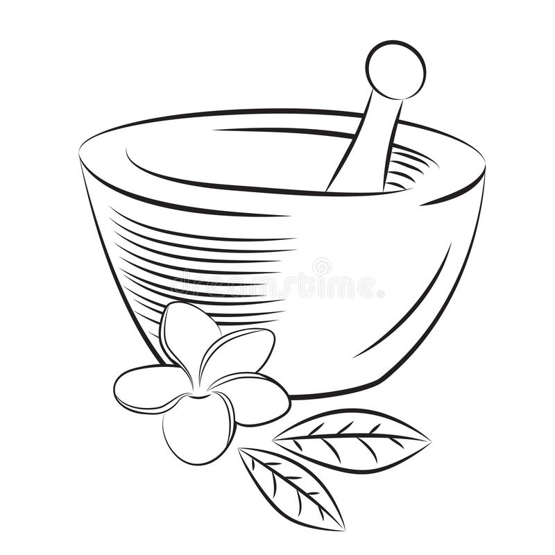 Mortar And Pestle With Frangipani Flower Graphic Style Stock Vector ...