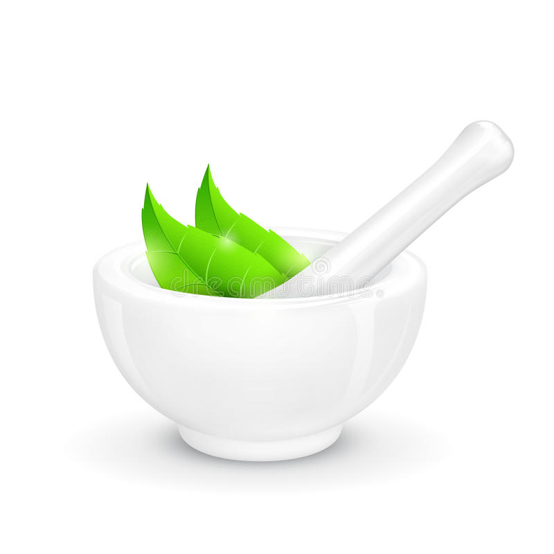 Mortar and Pestle with Herb vector illustration