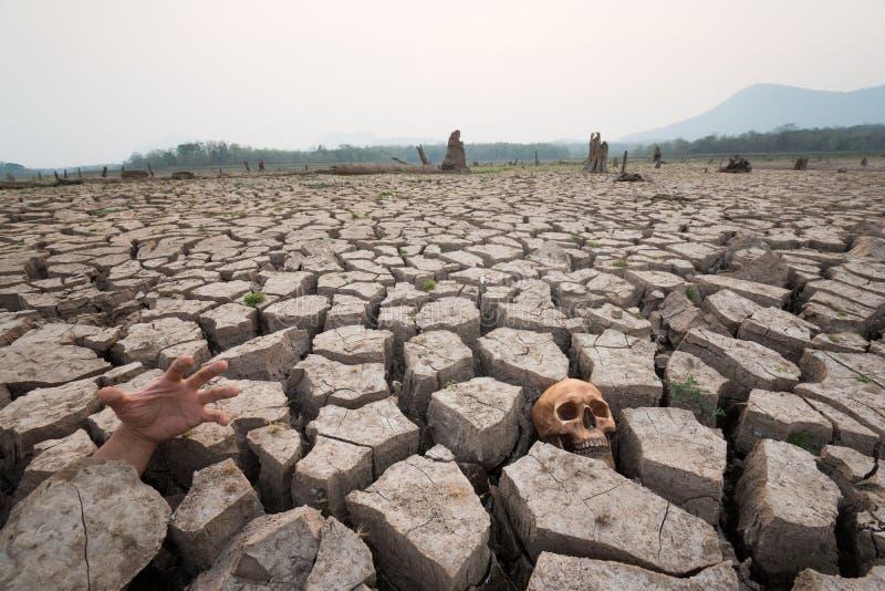Morte na seca com parte humana foto de stock royalty free
