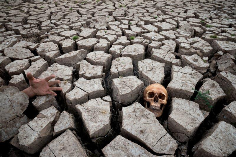 Morte na seca com parte humana imagens de stock