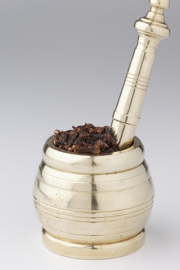 Mortel och mortelstöt med kryddnejlikan arkivfoton