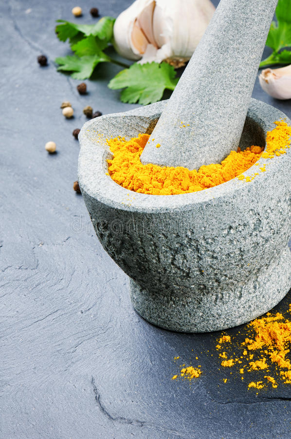 Mortel och pestle med curry royaltyfri foto