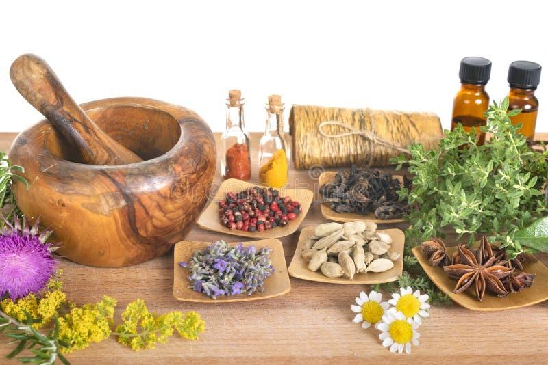 Mortel och växter arkivfoto