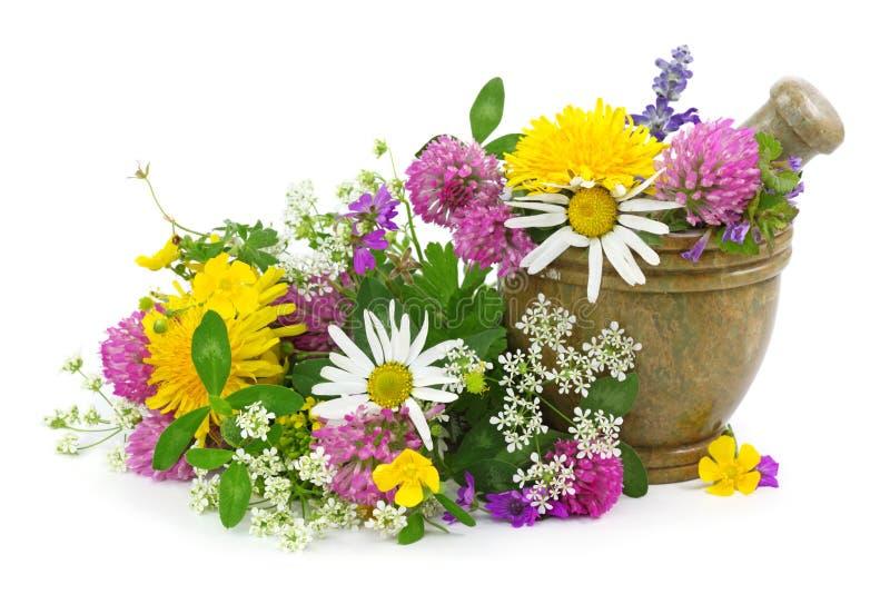 Mortero con las flores frescas foto de archivo