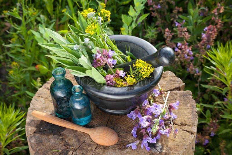 Mortero con las hierbas curativas y el sabio, botellas de aceite esencial imágenes de archivo libres de regalías