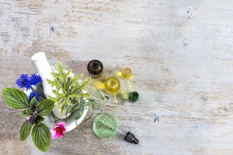 Mortero de cerámica con las hierbas y las plantas medicinales frescas en tboard de madera blanco viejo Preparación de las plantas fotos de archivo