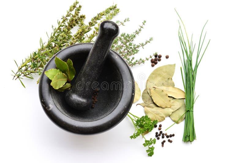 Mortier avec des herbes photographie stock