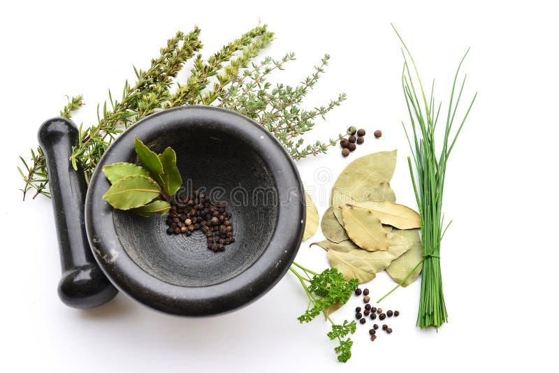 Mortier avec des herbes et des épices photos stock