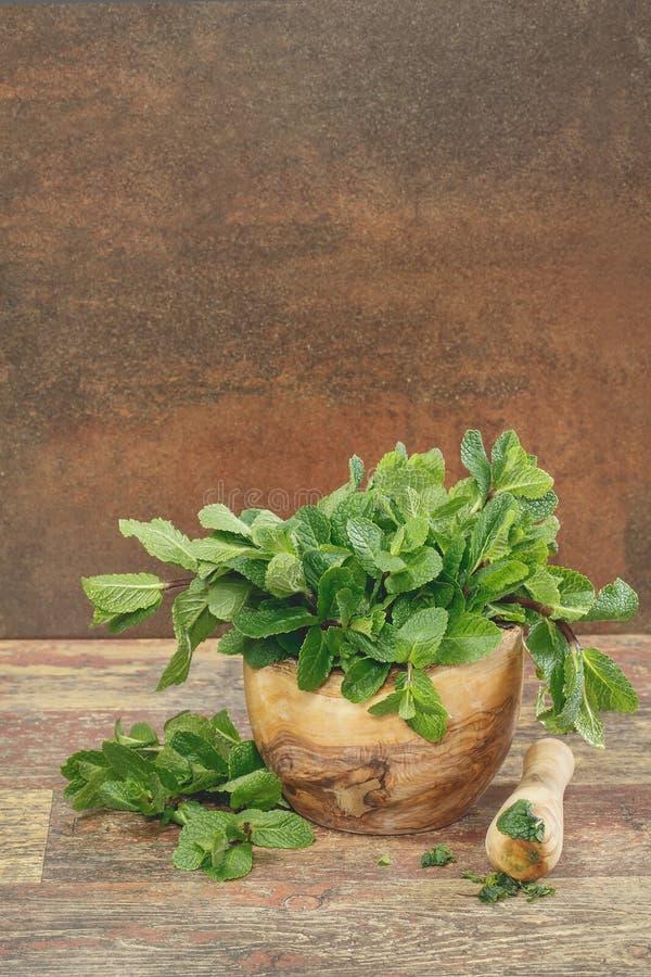 Mortier avec les feuilles en bon état fraîches photos stock