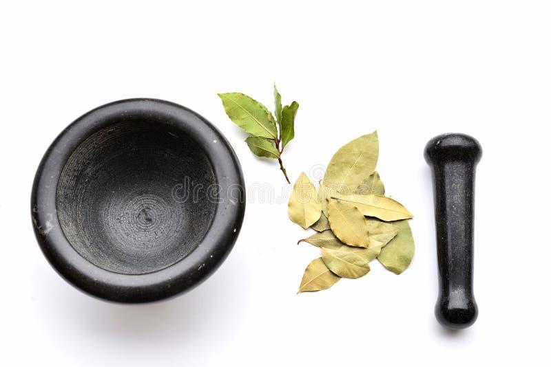 Mortier avec les feuilles fraîches et sèches de baie photo libre de droits