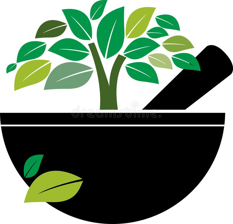 Mortier et pilon avec l'arbre de fines herbes illustration stock