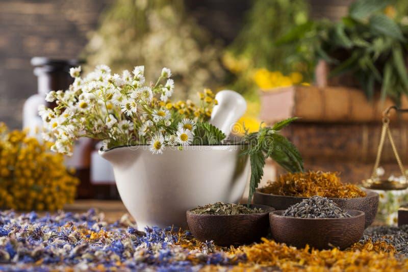 Mortier, médecine parallèle et remède naturel photos libres de droits