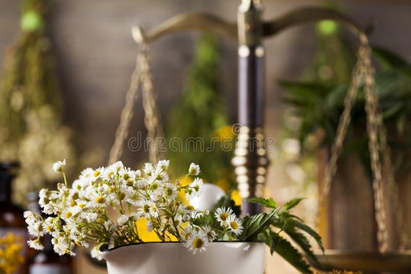 Mortier, médecine parallèle et remède naturel image libre de droits