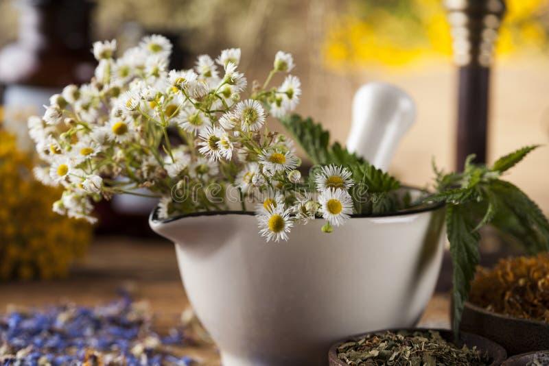 Mortier, médecine parallèle et remède naturel photo libre de droits