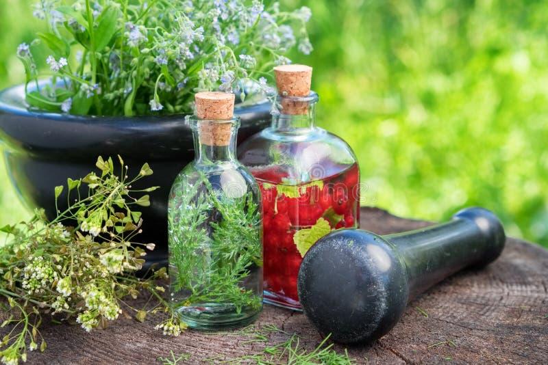 Mortier van het helen van kruiden, kruidentint, gezonde infusie en geneeskrachtige installaties stock foto's