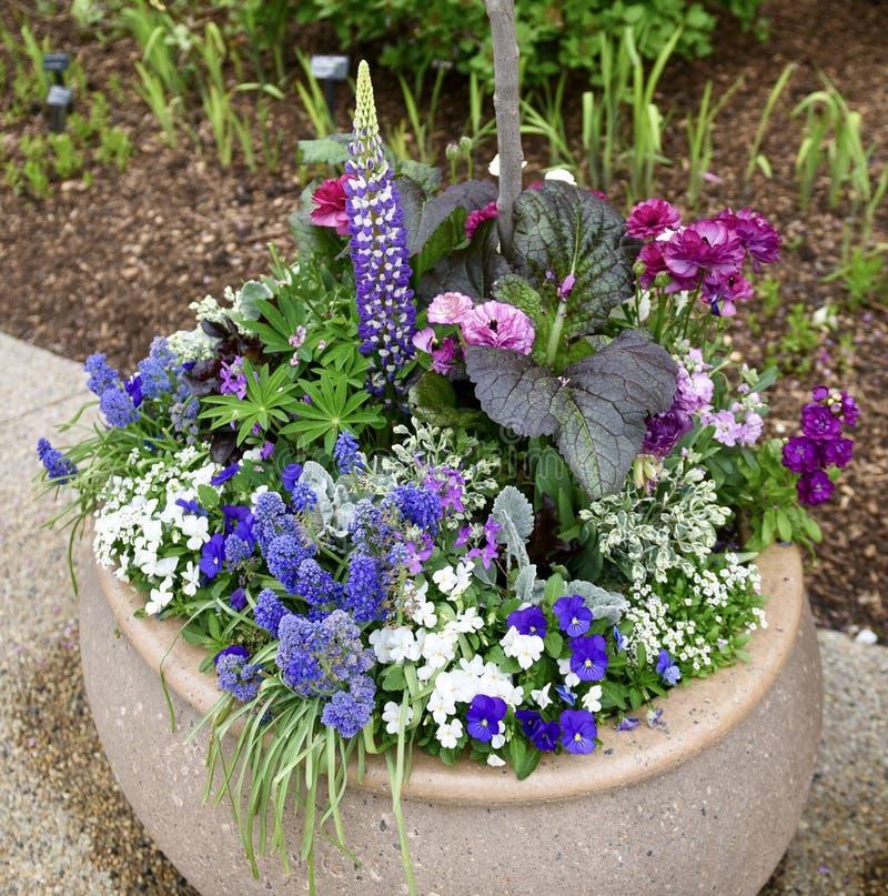 Morton Arboretum Flower Pot stockfotos