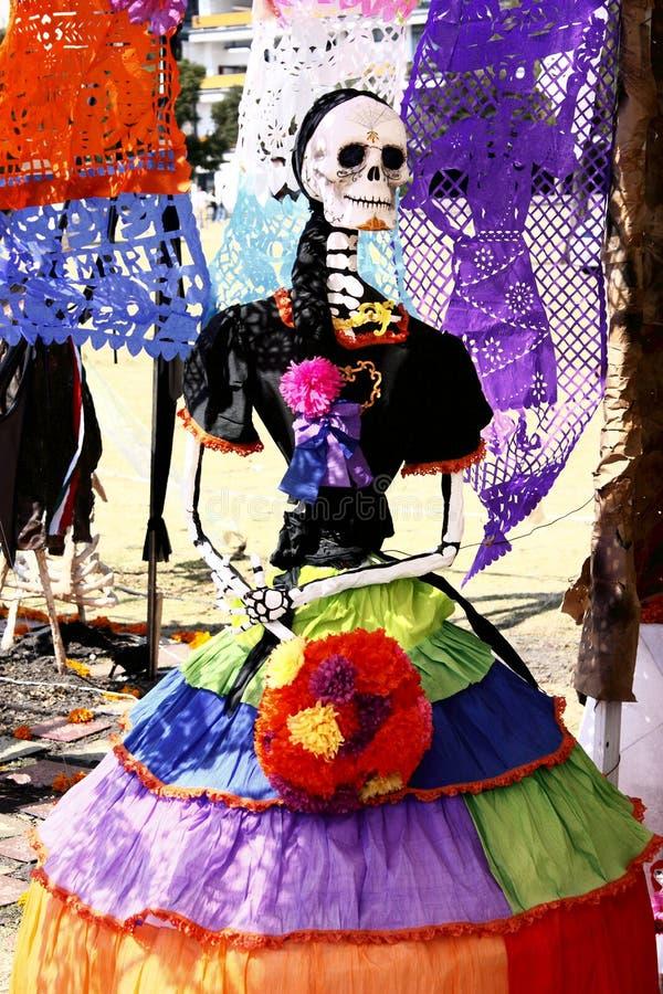 Morts colorés image stock
