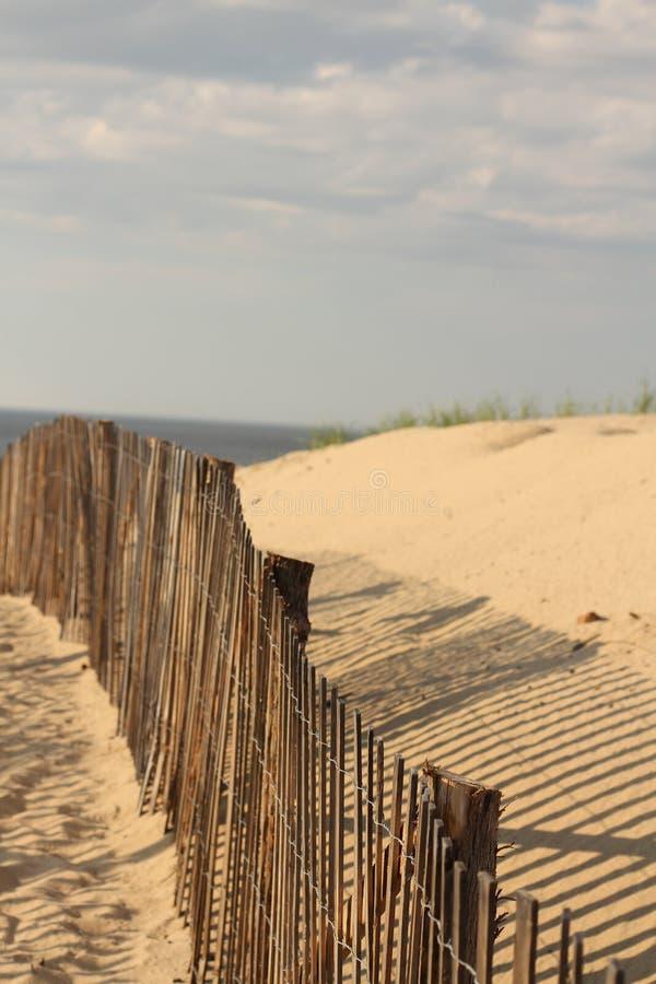 Morue de cap de plage de point de course images libres de droits
