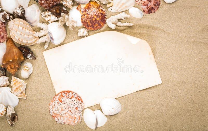 Morze łuska na plażowym piasku z starym papierem fotografia stock
