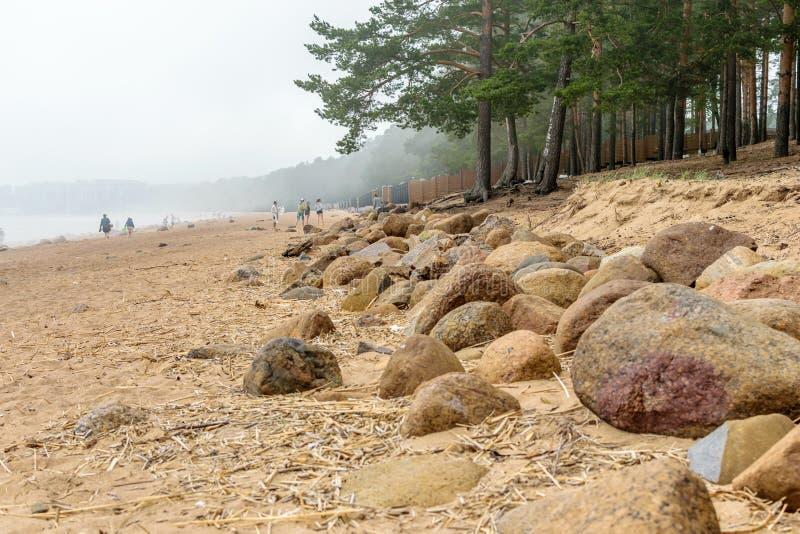 Morze Bałtyckie plaża w Repino blisko St Petersburg fotografia royalty free