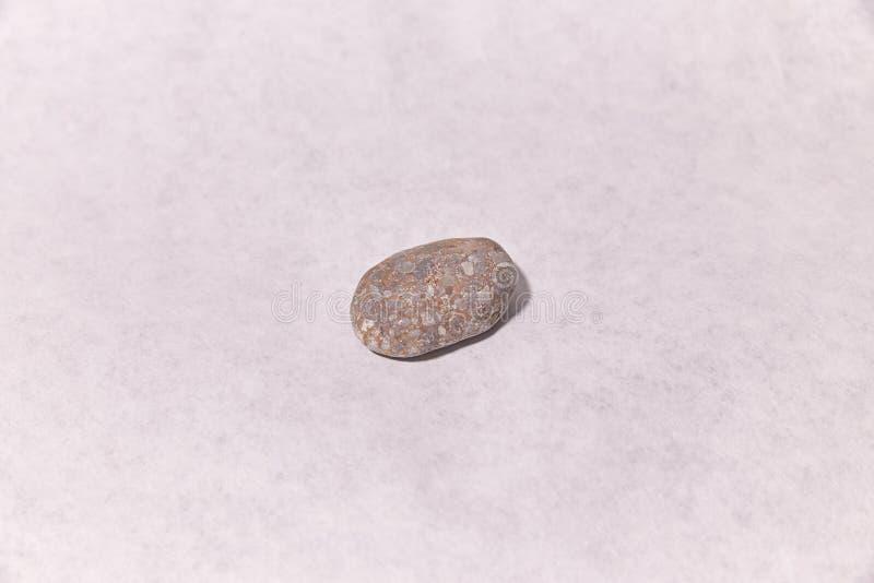 Morze kamień na powierzchni ampu?a pi?kne naturalny fotografia stock