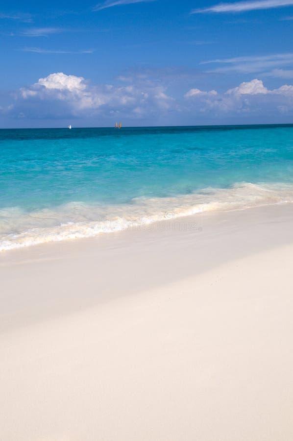 morze karaibskie zdjęcia royalty free