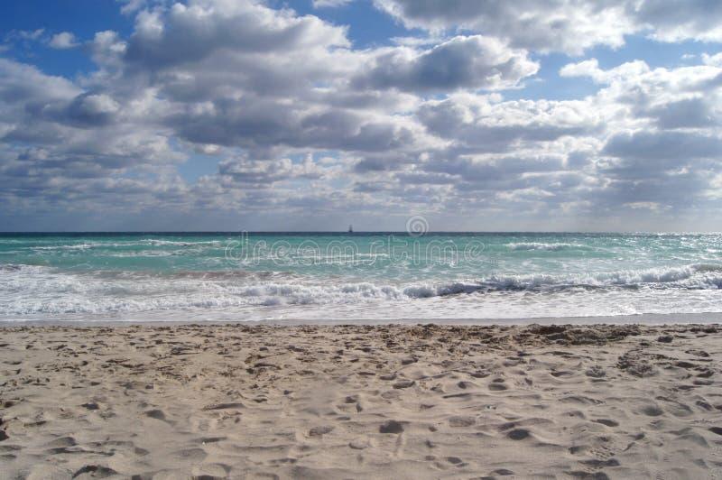 Morze, Miami, przy tłem niebieskie niebo, chmury, macha zdjęcia stock