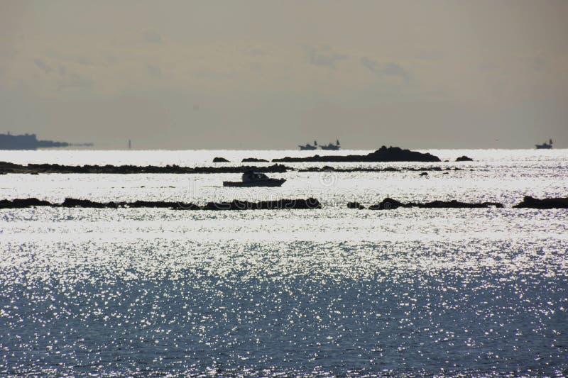 Morze nawierzchniowa i skalista sylwetka fotografia royalty free