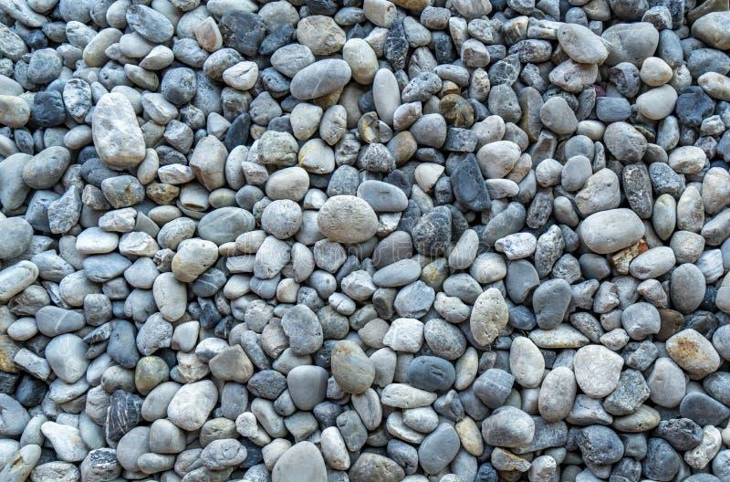 Morze okrągłe zdjęcie royalty free