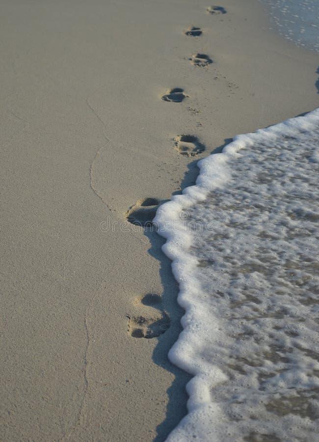 Morze, plaża, odciski stopy w piasku, fala, obmycie, piasek, lato, kurort, morze macha, morze piana zdjęcia royalty free