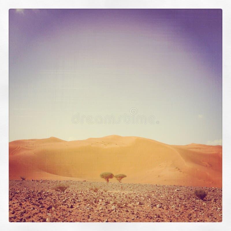 Morze, pustynia, Abudhabi, UAE, Dubaj obraz royalty free