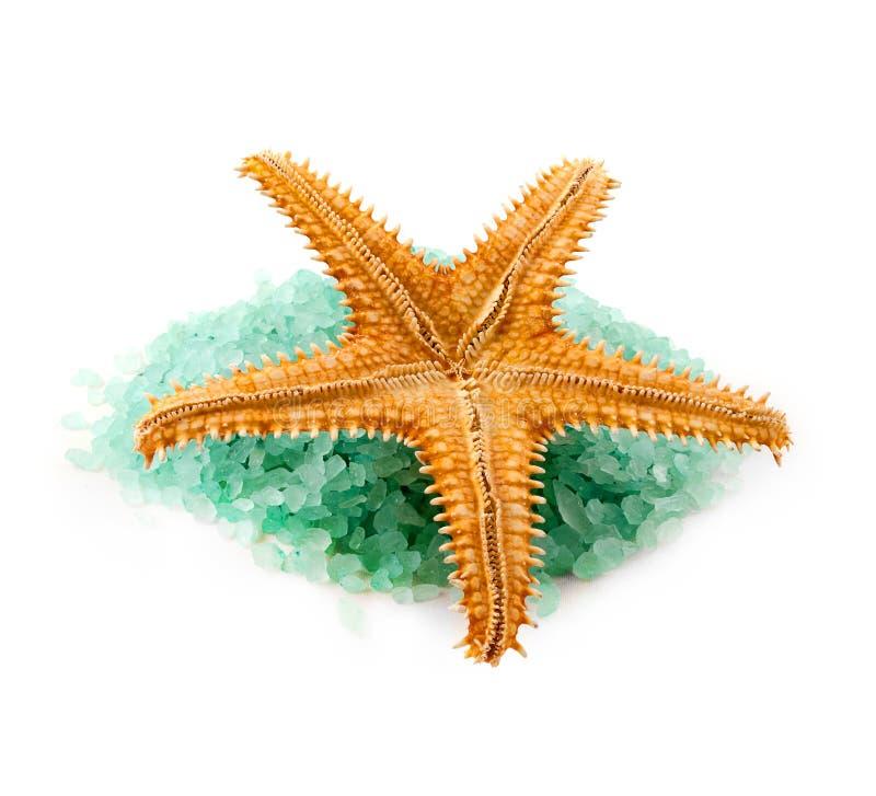 Morze solankowe granule. obrazy stock