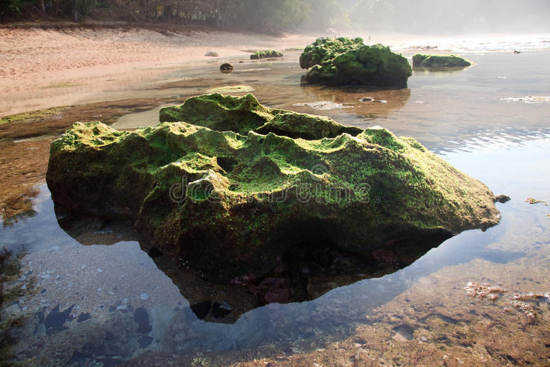 Mos behandelde rots die in pool wordt weerspiegeld royalty-vrije stock foto