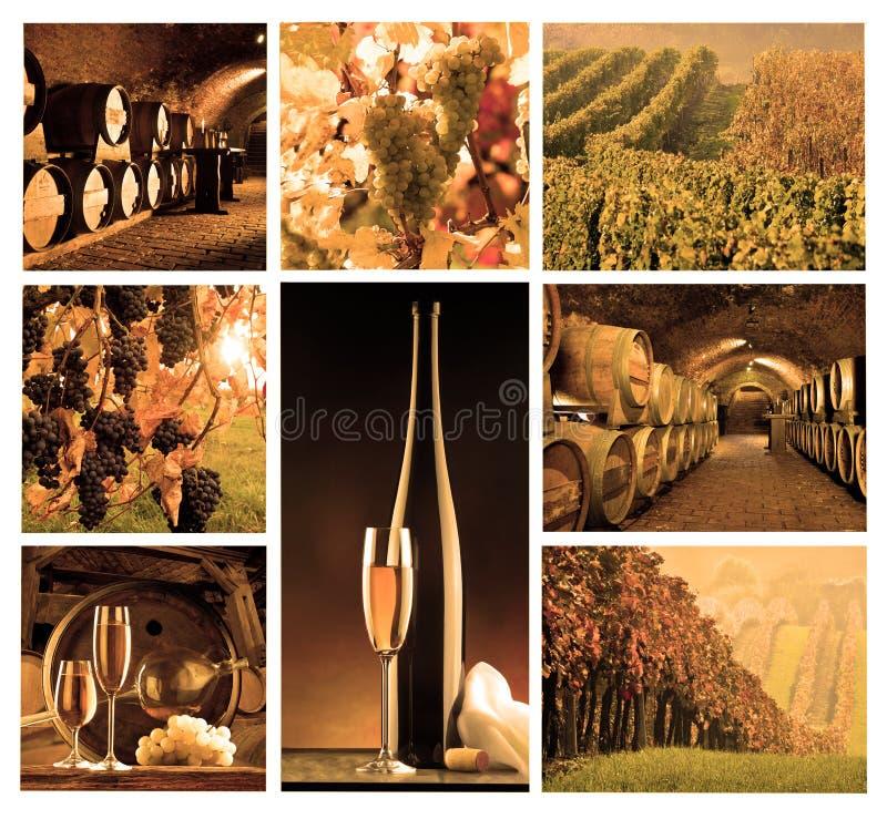 Mosaïque avec du vin photos libres de droits