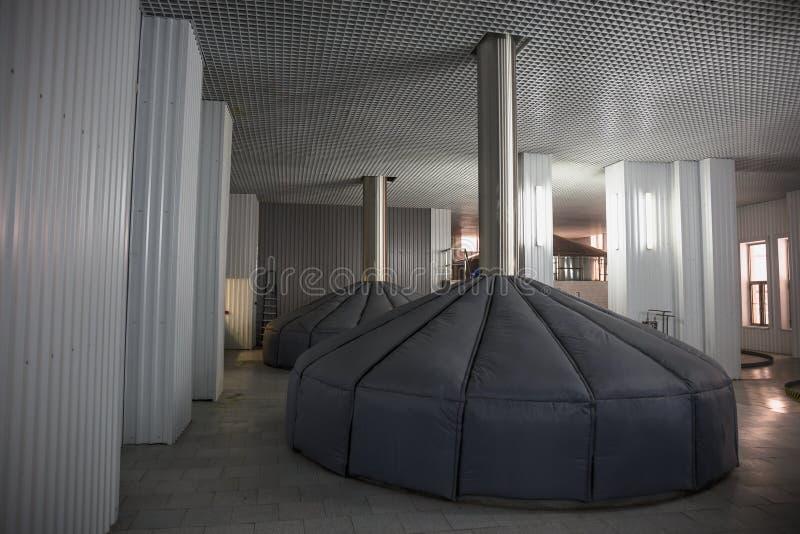 Mosa vats på den moderna ölfabriken, industriellt jäsa tankar, brygga produktion royaltyfria foton