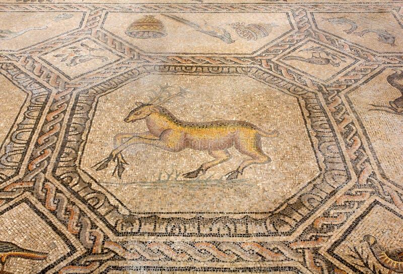 Mosaico antico del pavimento nella basilica di aquileia for Mosaico pavimento